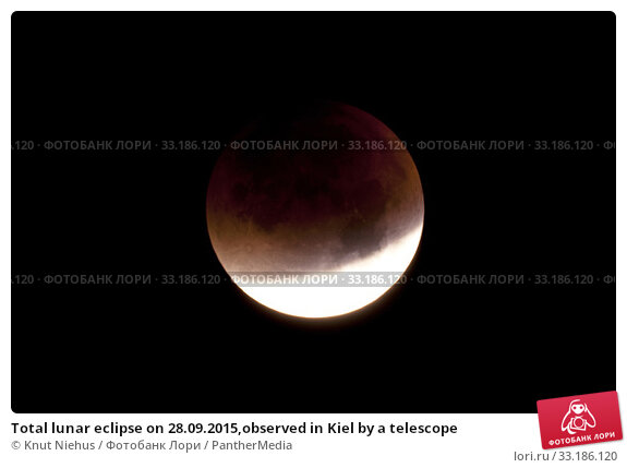 Купить «Total lunar eclipse on 28.09.2015,observed in Kiel by a telescope», фото № 33186120, снято 10 июля 2020 г. (c) PantherMedia / Фотобанк Лори