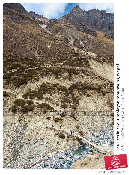 Купить «Tourists in the Himalayan mountains, Nepal», фото № 28728152, снято 6 апреля 2018 г. (c) Валерий Смирнов / Фотобанк Лори