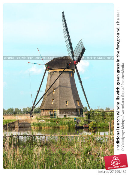 Купить «Traditional Dutch windmills with green grass in the foreground, The Netherlands», фото № 27795132, снято 19 октября 2018 г. (c) PantherMedia / Фотобанк Лори