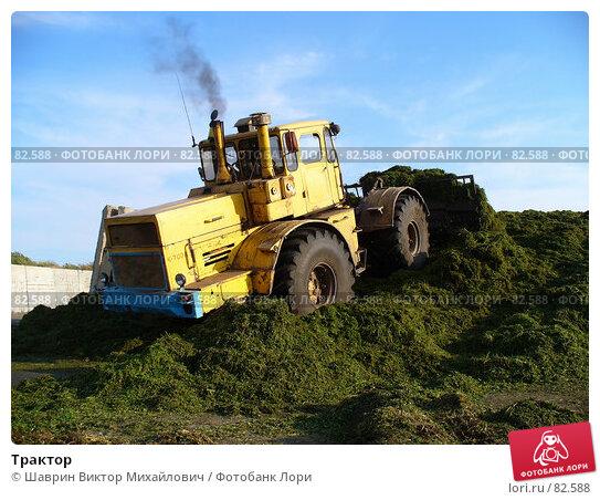 Трактор, фото № 82588, снято 24 августа 2007 г. (c) Шаврин Виктор Михайлович / Фотобанк Лори