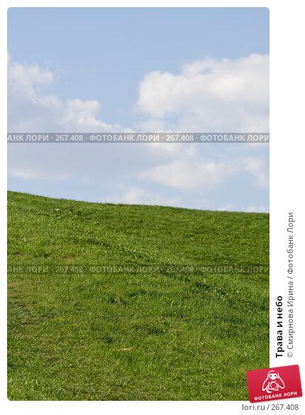Трава и небо, фото № 267408, снято 27 апреля 2008 г. (c) Смирнова Ирина / Фотобанк Лори