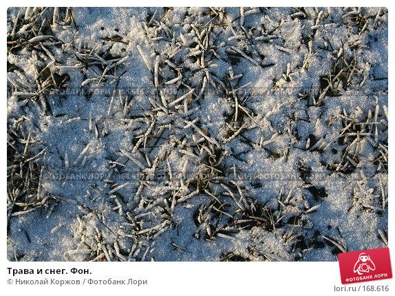 Трава и снег. Фон., фото № 168616, снято 7 января 2008 г. (c) Николай Коржов / Фотобанк Лори