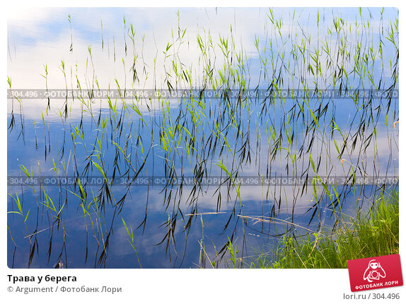 Трава у берега, фото № 304496, снято 11 июня 2007 г. (c) Argument / Фотобанк Лори