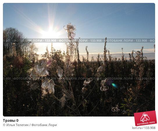 Травы 0, фото № 133908, снято 2 октября 2007 г. (c) Илья Телегин / Фотобанк Лори
