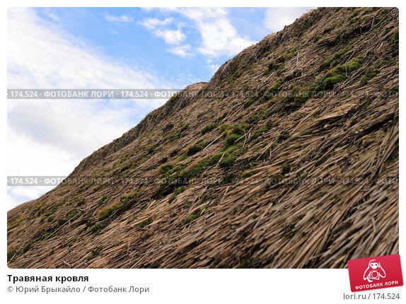 Травяная кровля, фото № 174524, снято 31 июля 2007 г. (c) Юрий Брыкайло / Фотобанк Лори