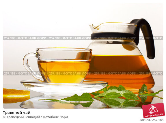 Травяной чай, фото № 257188, снято 22 июля 2005 г. (c) Кравецкий Геннадий / Фотобанк Лори