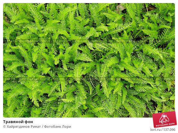 Травяной фон, фото № 137096, снято 9 мая 2007 г. (c) Хайрятдинов Ринат / Фотобанк Лори
