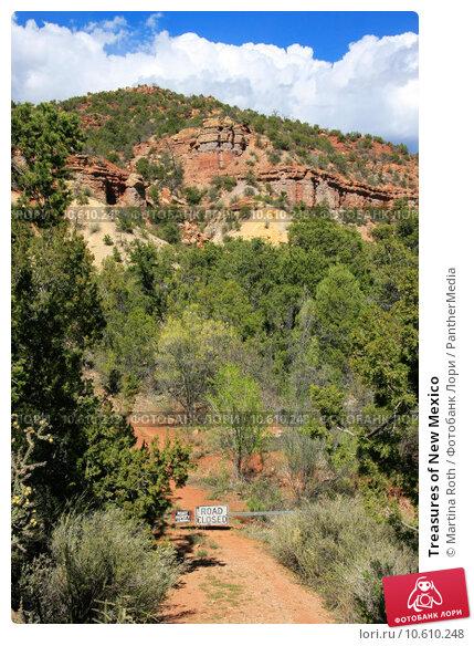 Купить «Treasures of New Mexico», фото № 10610248, снято 25 мая 2019 г. (c) PantherMedia / Фотобанк Лори