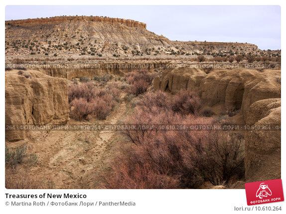 Купить «Treasures of New Mexico», фото № 10610264, снято 23 мая 2019 г. (c) PantherMedia / Фотобанк Лори