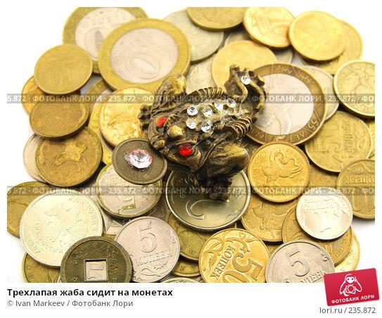 Трехлапая жаба сидит на монетах, фото № 235872, снято 23 сентября 2017 г. (c) Василий Каргандюм / Фотобанк Лори