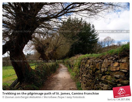 Trekking on the pilgrimage path of St. James, Camino Franchise. Стоковое фото, фотограф Zoonar.com/Sergei Aleliukhin / easy Fotostock / Фотобанк Лори