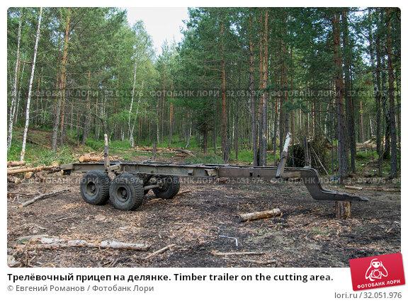 Трелёвочный прицеп на делянке. Timber trailer on the cutting area. Стоковое фото, фотограф Евгений Романов / Фотобанк Лори