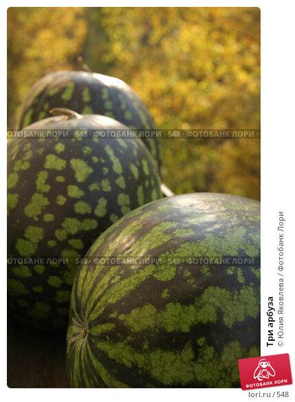 Три арбуза, фото № 548, снято 1 октября 2005 г. (c) Юлия Яковлева / Фотобанк Лори