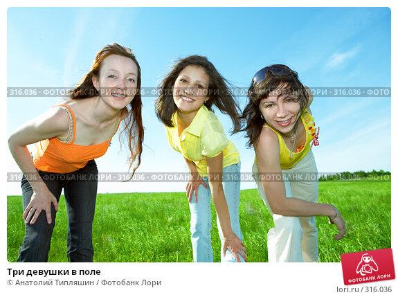 Три девушки в поле, фото № 316036, снято 8 июня 2008 г. (c) Анатолий Типляшин / Фотобанк Лори