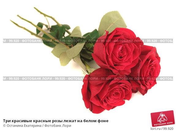 Три красивые красные розы лежат на белом фоне, фото № 99920, снято 12 октября 2007 г. (c) Останина Екатерина / Фотобанк Лори