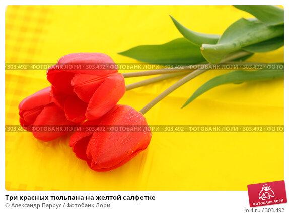 Три красных тюльпана на желтой салфетке, фото № 303492, снято 21 апреля 2008 г. (c) Александр Паррус / Фотобанк Лори