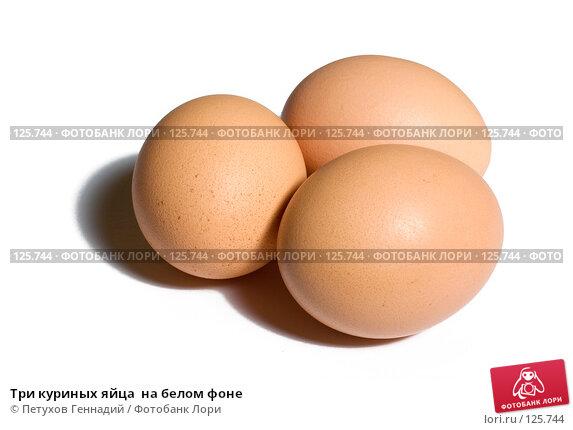 Купить «Три куриных яйца  на белом фоне», фото № 125744, снято 13 ноября 2007 г. (c) Петухов Геннадий / Фотобанк Лори