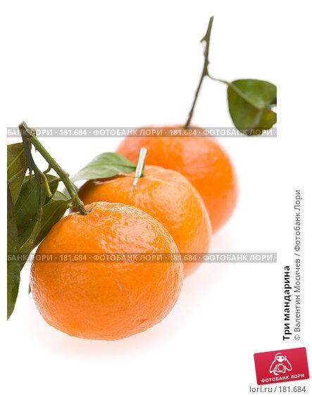 Купить «Три мандарина», фото № 181684, снято 20 января 2008 г. (c) Валентин Мосичев / Фотобанк Лори
