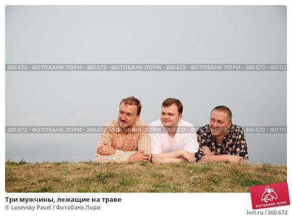 Три мужчины, лежащие на траве, фото № 260672, снято 21 февраля 2017 г. (c) Losevsky Pavel / Фотобанк Лори