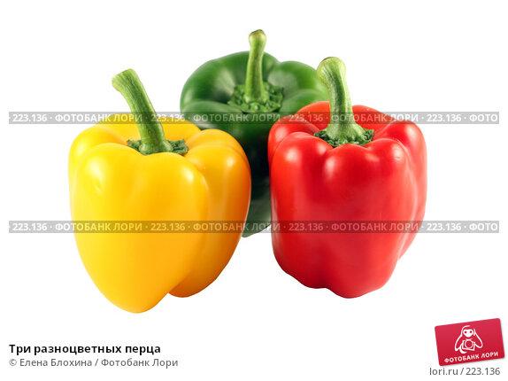 Три разноцветных перца, фото № 223136, снято 24 июля 2007 г. (c) Елена Блохина / Фотобанк Лори