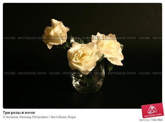 Три розы в ночи, фото № 143984, снято 10 декабря 2007 г. (c) Коннов Леонид Петрович / Фотобанк Лори