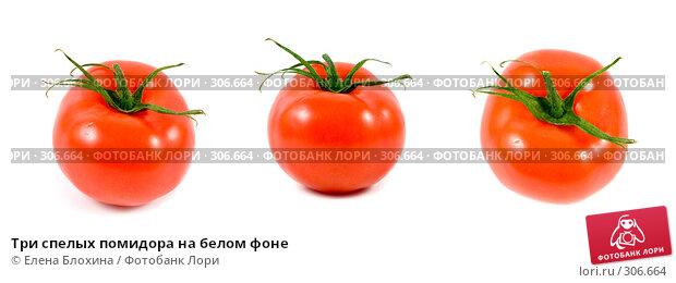 Три спелых помидора на белом фоне, фото № 306664, снято 28 октября 2016 г. (c) Елена Блохина / Фотобанк Лори