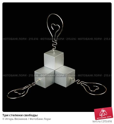 Три степени свободы, фото № 215616, снято 5 марта 2008 г. (c) Игорь Веснинов / Фотобанк Лори