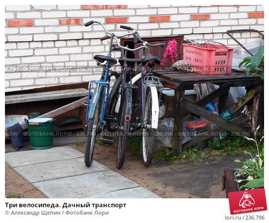 Купить «Три велосипеда. Дачный транспорт», эксклюзивное фото № 236796, снято 4 августа 2007 г. (c) Александр Щепин / Фотобанк Лори