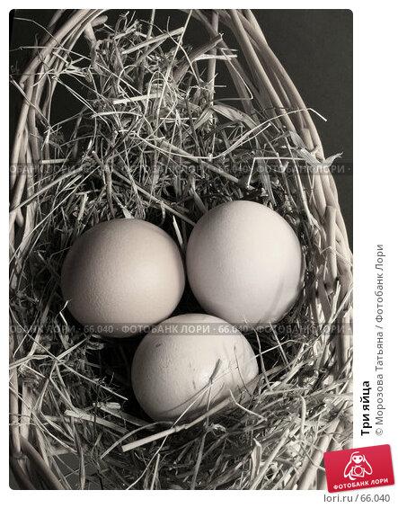 Три яйца, фото № 66040, снято 6 марта 2007 г. (c) Морозова Татьяна / Фотобанк Лори