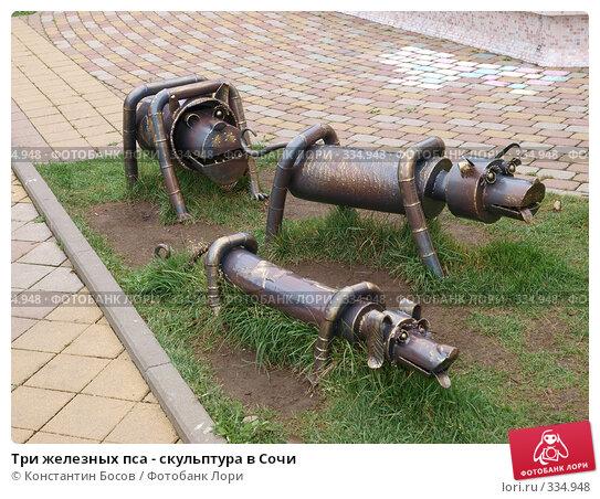 Купить «Три железных пса - скульптура в Сочи», фото № 334948, снято 23 апреля 2018 г. (c) Константин Босов / Фотобанк Лори