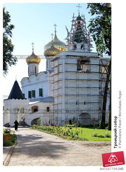 Купить «Троицкий собор», фото № 116040, снято 18 июля 2007 г. (c) Parmenov Pavel / Фотобанк Лори