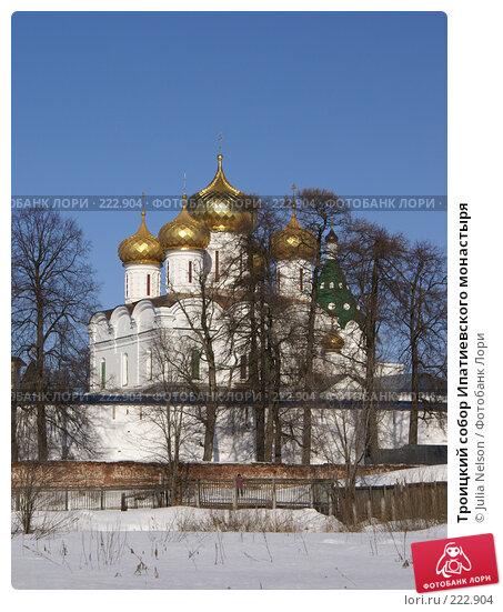 Купить «Троицкий собор Ипатиевского монастыря», фото № 222904, снято 24 февраля 2008 г. (c) Julia Nelson / Фотобанк Лори