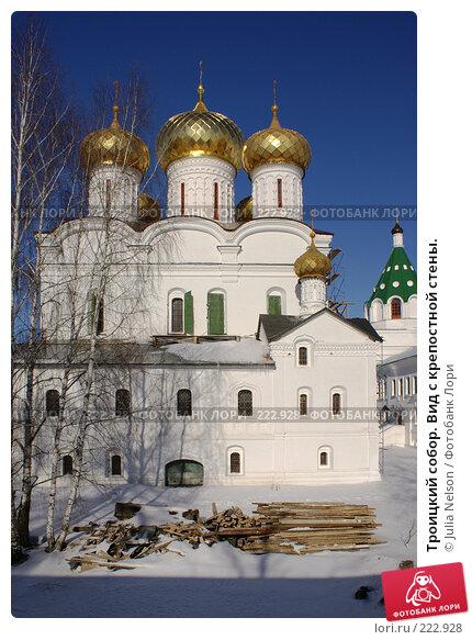 Троицкий собор. Вид с крепостной стены., фото № 222928, снято 24 февраля 2008 г. (c) Julia Nelson / Фотобанк Лори