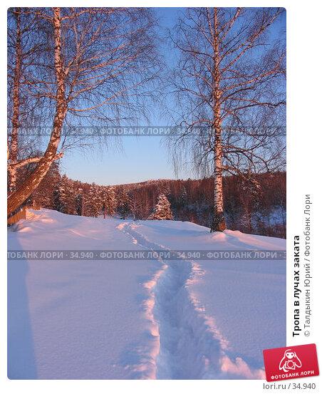 Купить «Тропа в лучах заката», фото № 34940, снято 24 февраля 2007 г. (c) Талдыкин Юрий / Фотобанк Лори