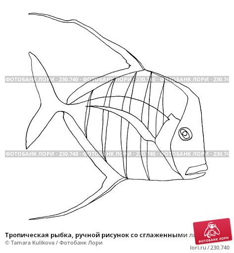 Тропическая рыбка, ручной рисунок со сглаженными линиями, иллюстрация № 230740 (c) Tamara Kulikova / Фотобанк Лори
