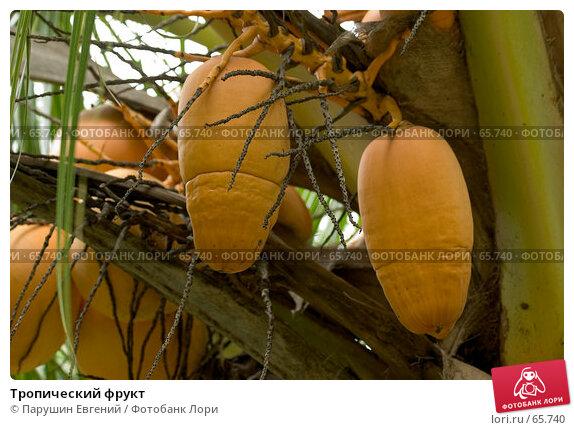 Тропический фрукт, фото № 65740, снято 29 апреля 2017 г. (c) Парушин Евгений / Фотобанк Лори