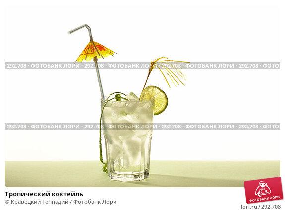 Купить «Тропический коктейль», фото № 292708, снято 2 октября 2005 г. (c) Кравецкий Геннадий / Фотобанк Лори