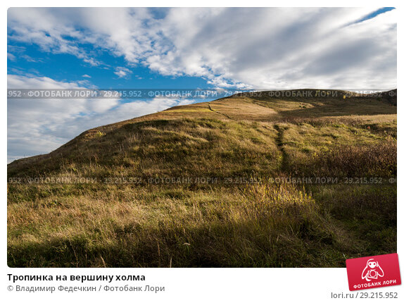 Купить «Тропинка на вершину холма», фото № 29215952, снято 1 октября 2018 г. (c) Владимир Федечкин / Фотобанк Лори