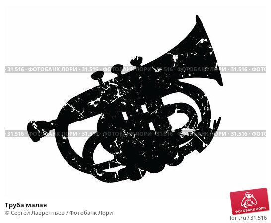 Труба малая, иллюстрация № 31516 (c) Сергей Лаврентьев / Фотобанк Лори