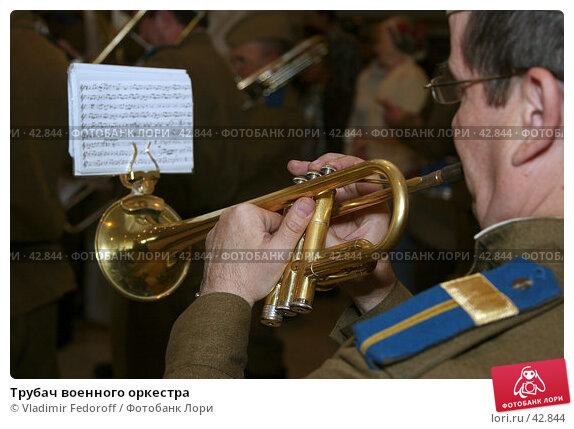 Купить «Трубач военного оркестра», фото № 42844, снято 4 мая 2007 г. (c) Vladimir Fedoroff / Фотобанк Лори