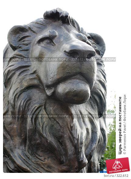 Купить «Царь зверей на постаменте», фото № 322612, снято 22 мая 2008 г. (c) Parmenov Pavel / Фотобанк Лори