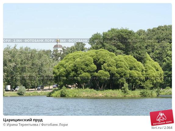 Царицинский пруд, эксклюзивное фото № 2064, снято 16 июня 2005 г. (c) Ирина Терентьева / Фотобанк Лори