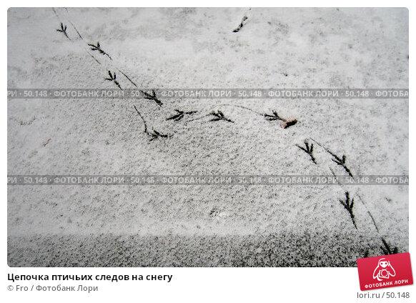 Купить «Цепочка птичьих следов на снегу», фото № 50148, снято 26 октября 2005 г. (c) Fro / Фотобанк Лори