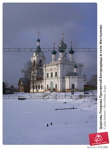 Церковь Покрова Пресвятой Богородицы в селе Жестылево, фото № 219288, снято 15 февраля 2008 г. (c) Julia Nelson / Фотобанк Лори