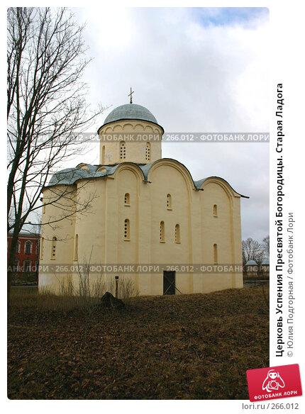 Церковь Успения Пресвятой Богородицы. Старая Ладога, фото № 266012, снято 19 апреля 2008 г. (c) Юлия Селезнева / Фотобанк Лори