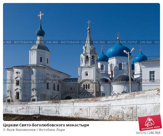 Церкви Свято-Боголюбовского монастыря, фото № 246968, снято 29 марта 2008 г. (c) Яков Филимонов / Фотобанк Лори