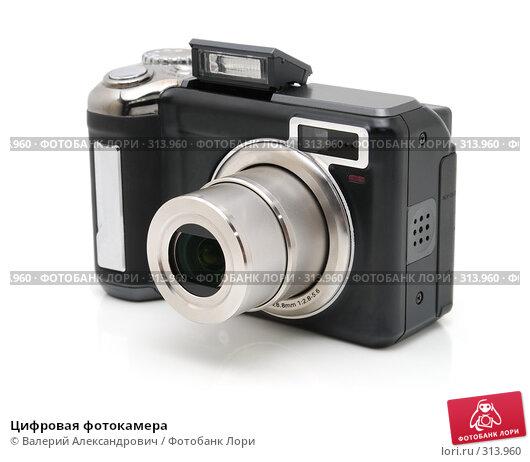 Купить «Цифровая фотокамера», фото № 313960, снято 4 июня 2008 г. (c) Валерий Александрович / Фотобанк Лори