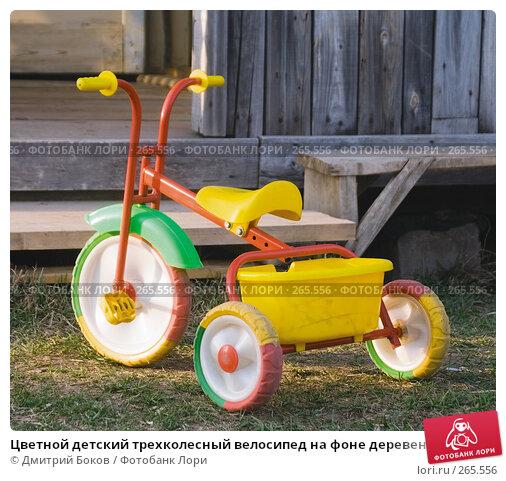Цветной детский трехколесный велосипед на фоне деревенского дома, фото № 265556, снято 20 апреля 2008 г. (c) Дмитрий Боков / Фотобанк Лори