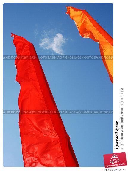 Цветной флаг, фото № 261492, снято 24 апреля 2008 г. (c) Брыков Дмитрий / Фотобанк Лори