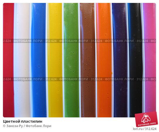 Цветной пластилин, фото № 312624, снято 3 июня 2008 г. (c) Заноза-Ру / Фотобанк Лори